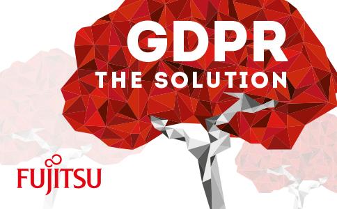 Fujitsu the solution