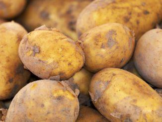 potato-3440360_1280