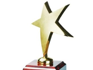 Does someone in your business deserve a Professional of the Year award?