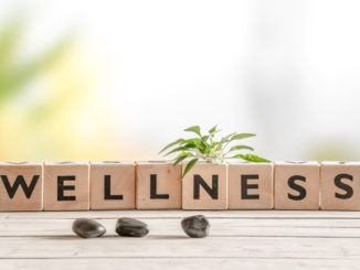 Workplace wellbeing session announced for Leaders of the Future Conference