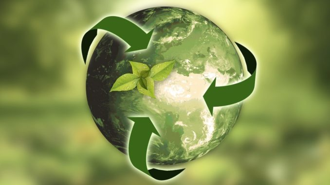 Sustainable packaging supply chain