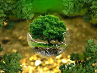 Canon celebrates sustainable development goals