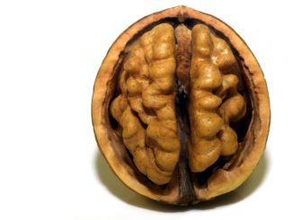 Best brain-boosting food