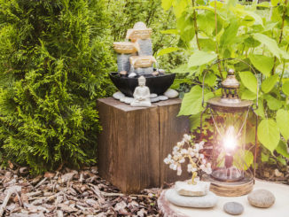 Creating a mindful garden