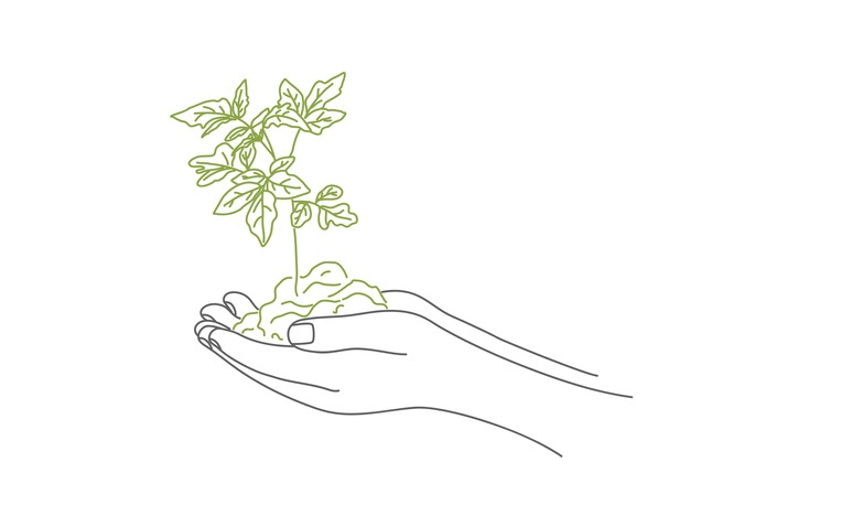 Ground with sprout in hands.